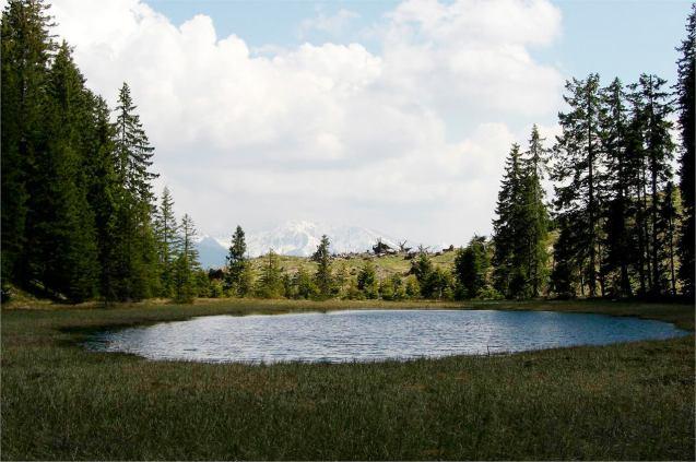 schwarzensee
