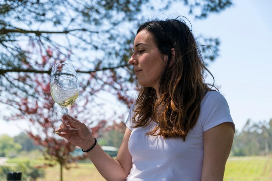 Cata de vino Albariño