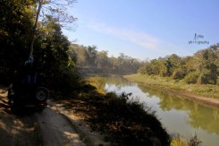 A good location along a river to spot the elusive royal bengal tiger at kaziranga