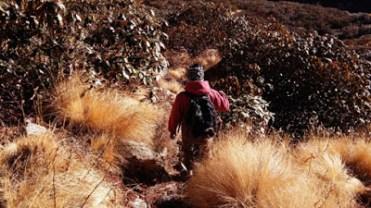 Tathagata moving through the trail