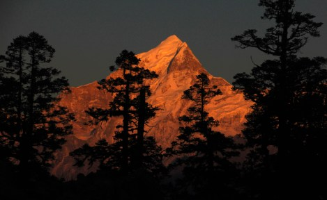 Mt. Dronagiri at sunset, from Khullara campsite , Garhwal, Uttarakhand