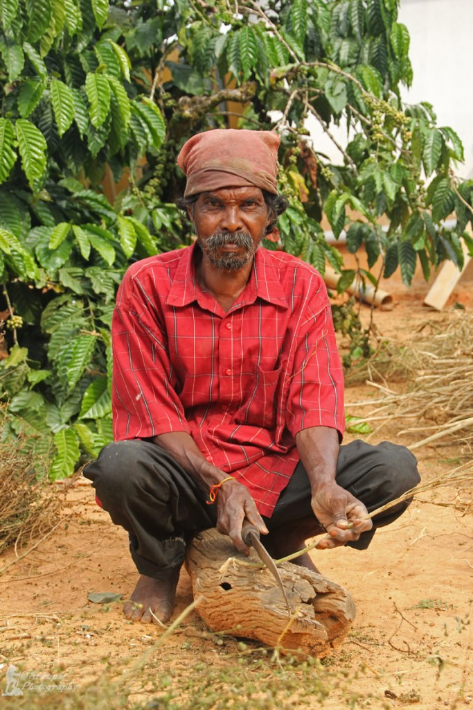 Potrait of a worker in the plantation