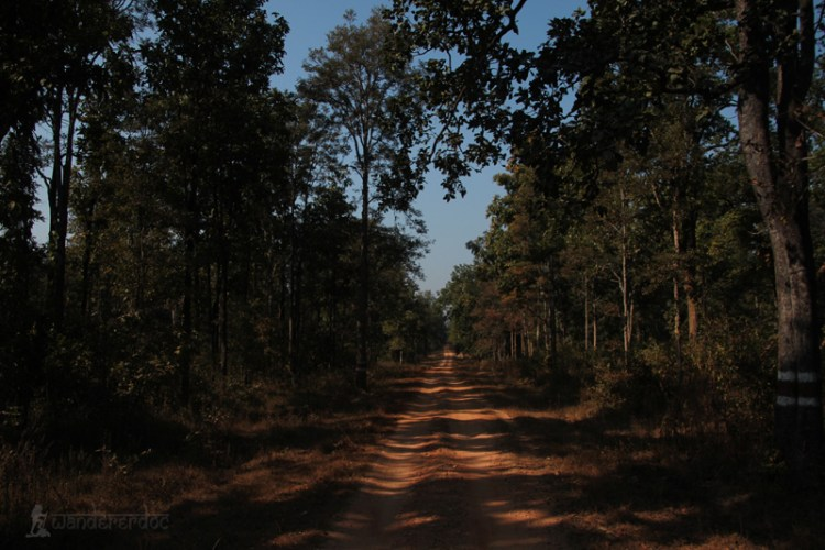 Barnwapara national park