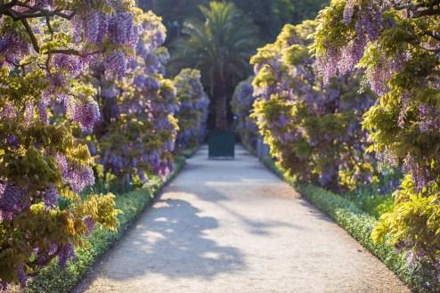 Botanische Tuin Leuven-5