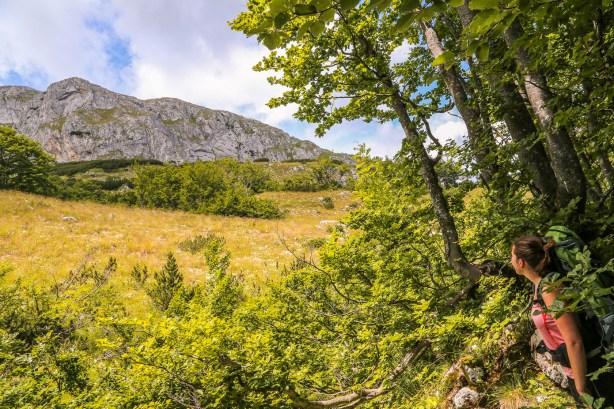 Reizen Montenegro - hiken in Durmitor