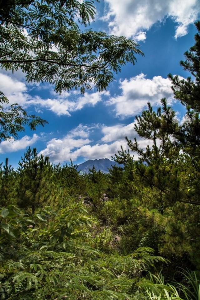 Sakurajima[BLOG]-21