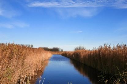 Lauwersmeer Wandeling-16