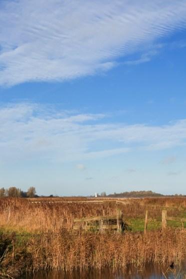 Lauwersmeer Wandeling-19