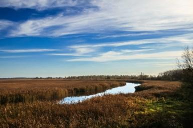 Lauwersmeer Wandeling-7