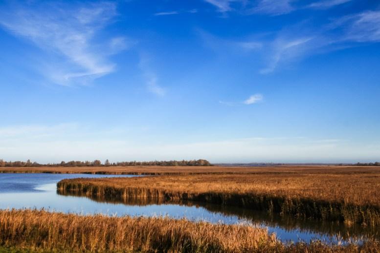 Lauwersmeer Wandeling-8