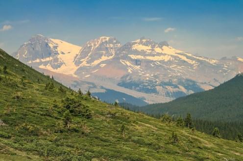 Canada - Eenvoudige hikes - Wilcox Pass-1