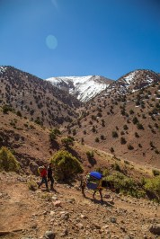 Marokko - dag 4-15