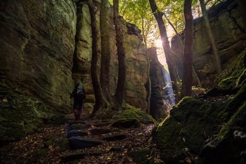 Mullerthal Trail-18