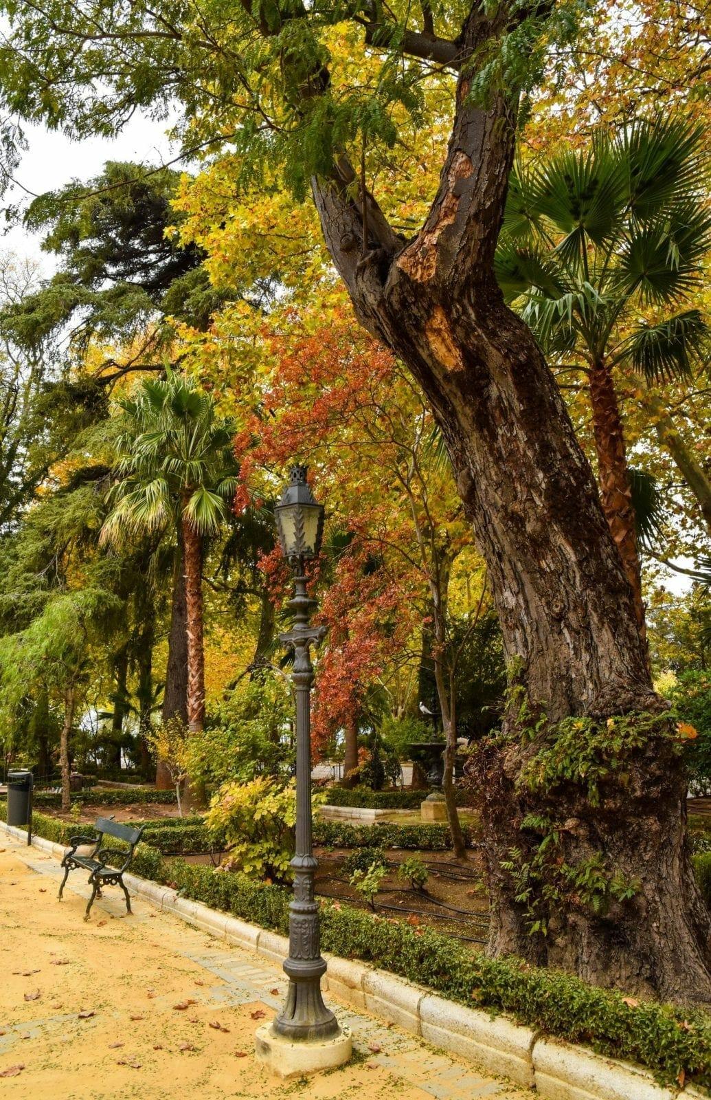 City Park Ronda