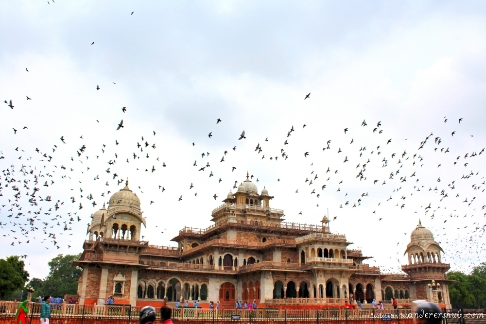 Central Museum - places to visit in Jaipur
