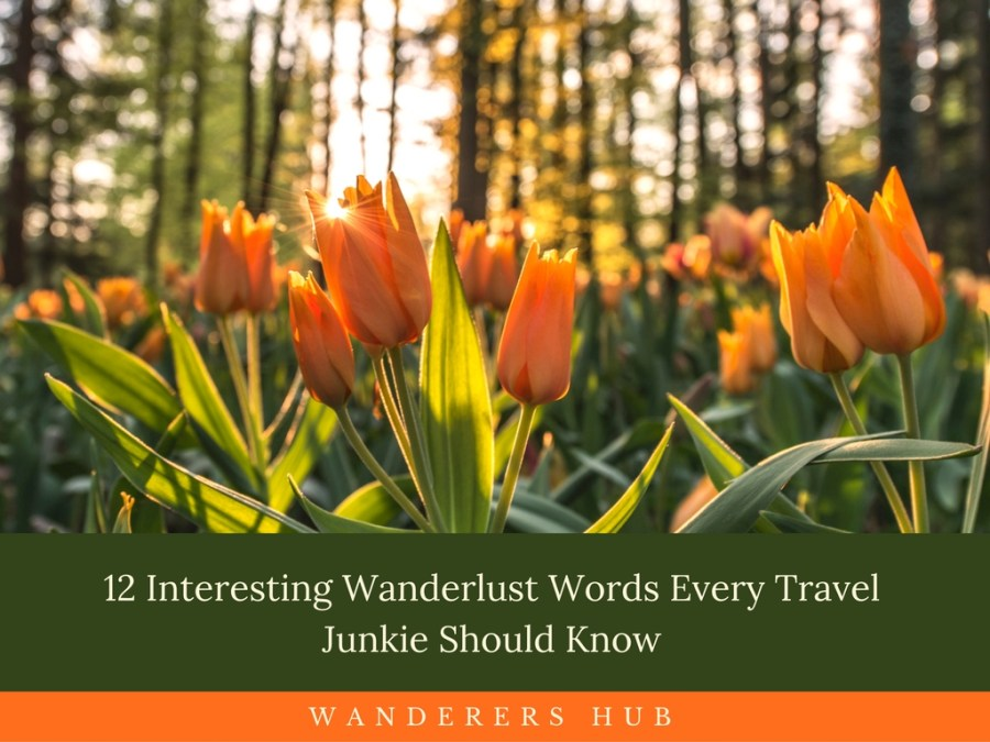 12 Interesting Wanderlust Words Every Travel Junkie Should Know