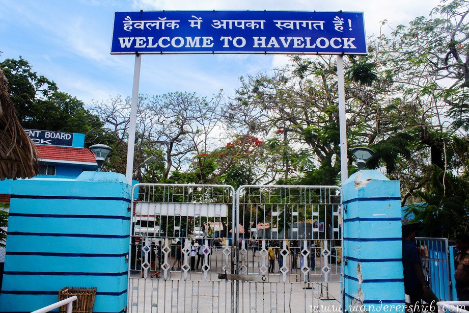 things to do in havelock island