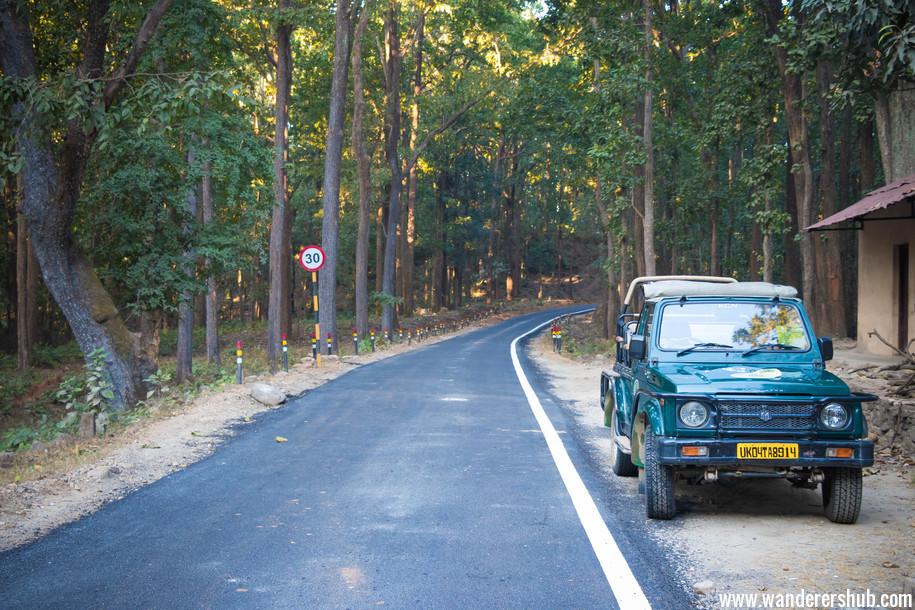 Jeep Safari tour Corbett