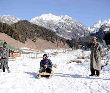 Sledging Aru Valley