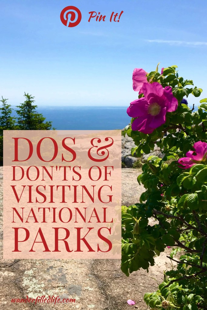 Visiting National Parks are a summer tradition for many folks. Before you head into a park, be sure to read these dos and don'ts to make you visit better.