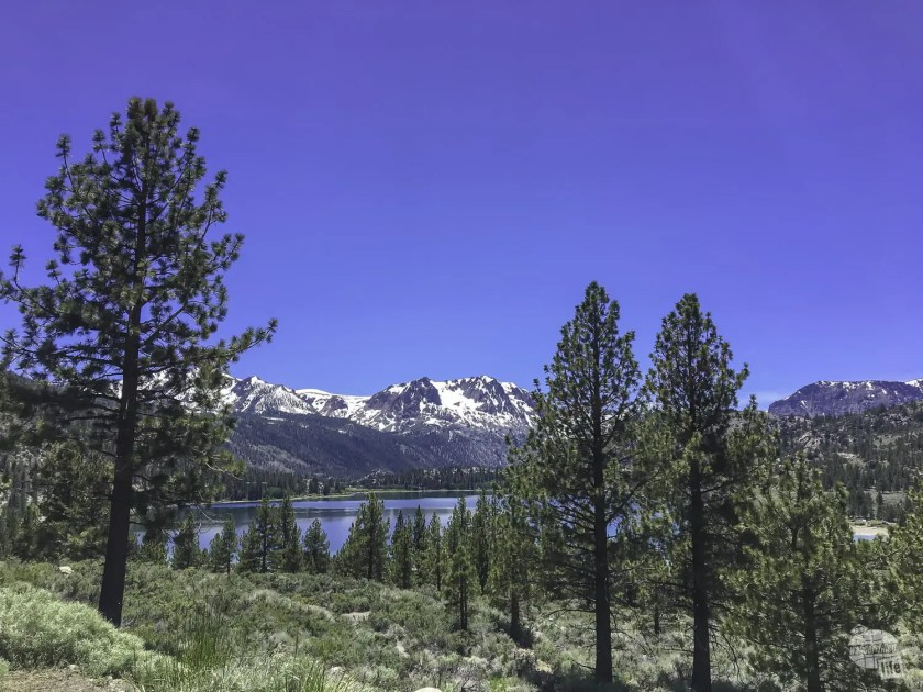 June Lake, just about 20 miles south of Mono Lake.