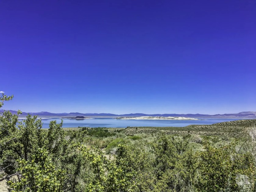 Saltwater Mono Lake is the highlight of Lee Vining, CA.