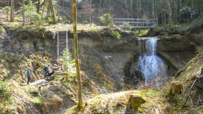 Rundwanderung Zürcher Oberland