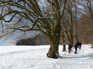 Winterwanderung Zugerberg