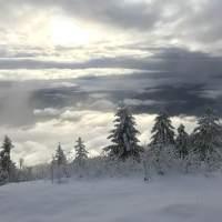 15.12.19 - 3. Advent Rigiwanderung und Fondueplausch