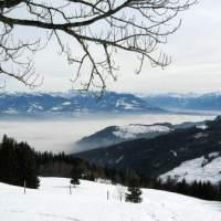 01.02.21: Winterwandern im Appenzellerland - Rundwanderung Gais