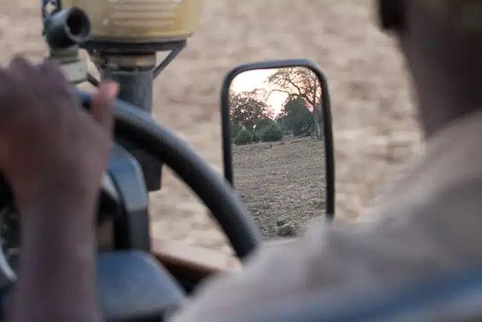 Chauffeur safari