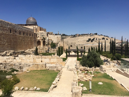 Jerusalem, Israel Wandering Chocobo