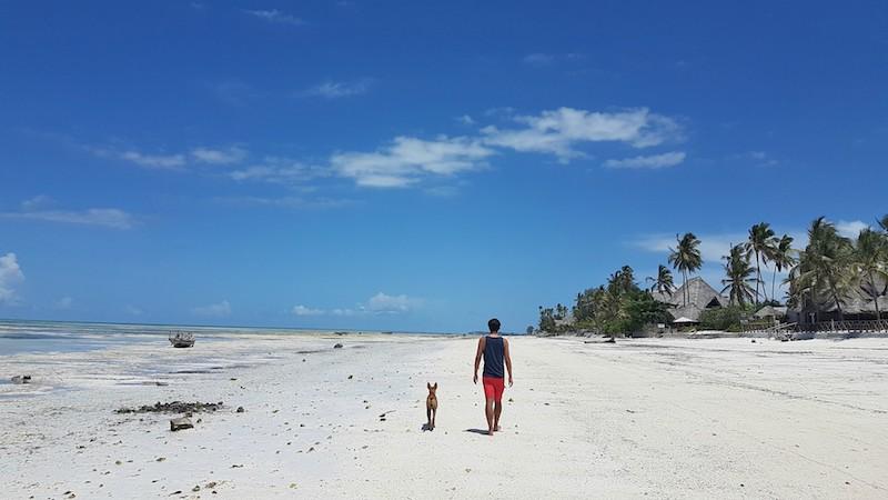 Trip to Zanzibar - Jambiani Beach
