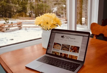homestead blogs