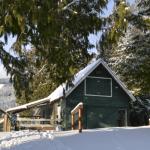 winter homestead activities