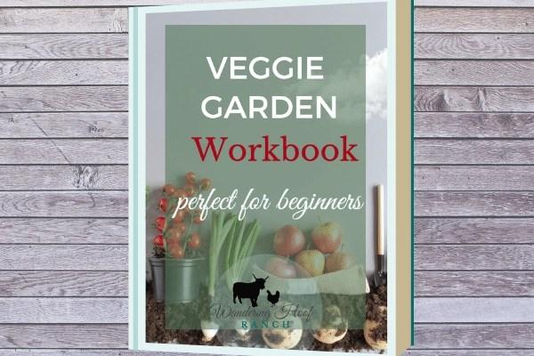 veggie garden workbook and email course