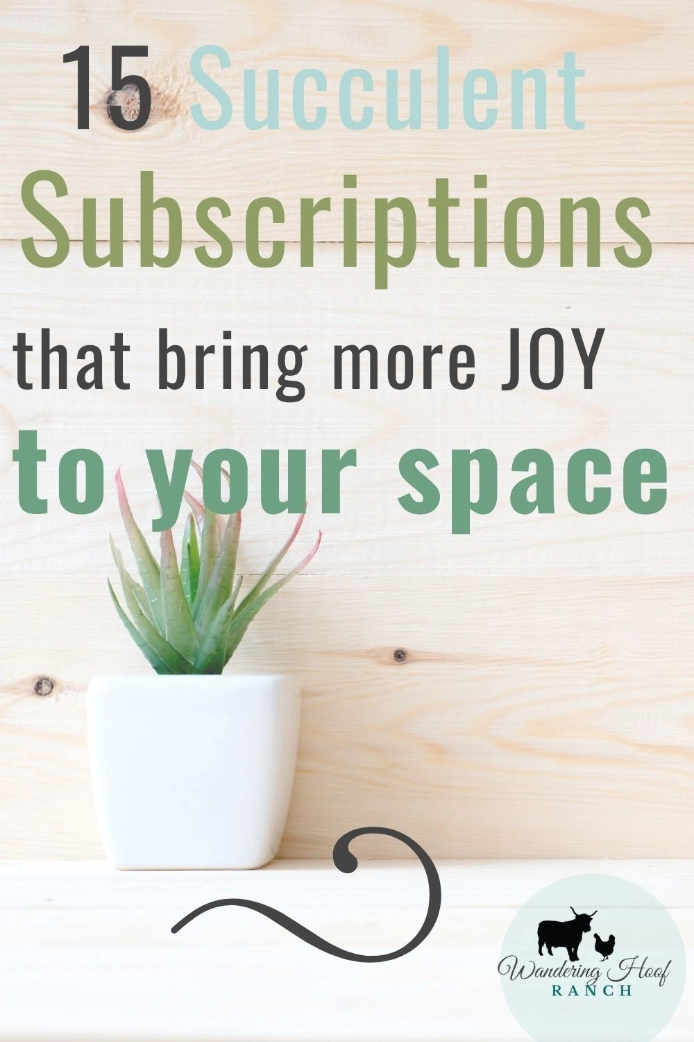 15 succulent subscription boxes that bring more joy to your space pin image