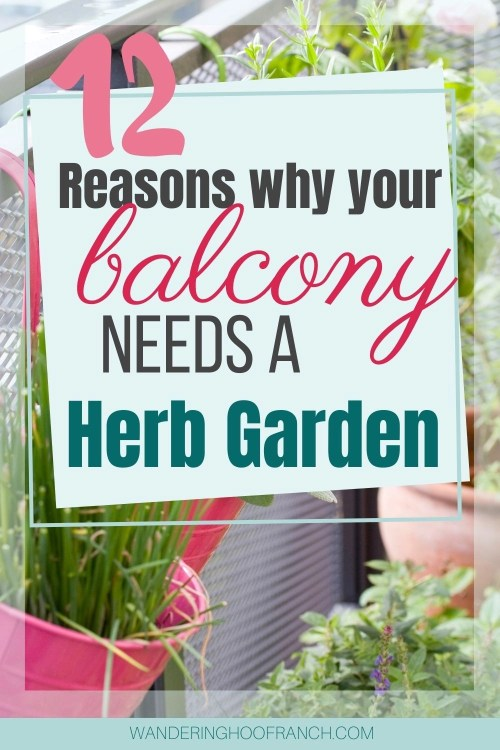 12 reasons why your balcony needs a herb garden pin image