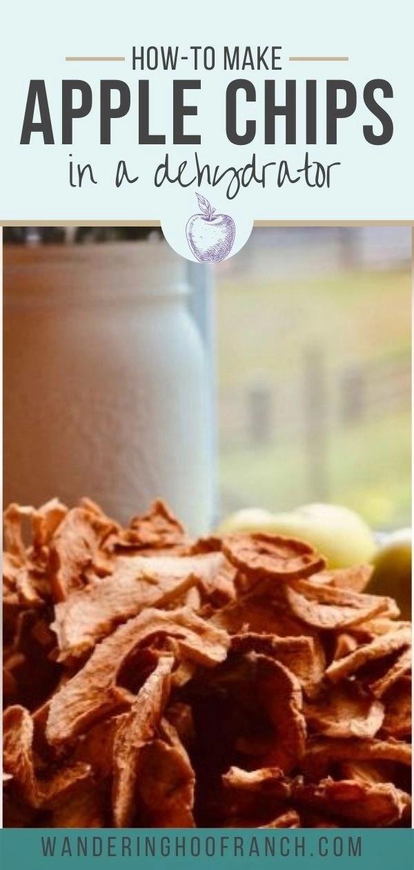 apple chips recipe pin
