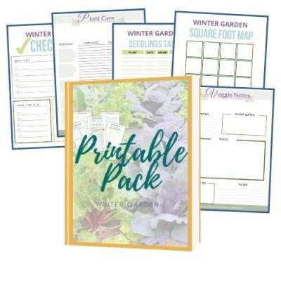 winter garden printable pack