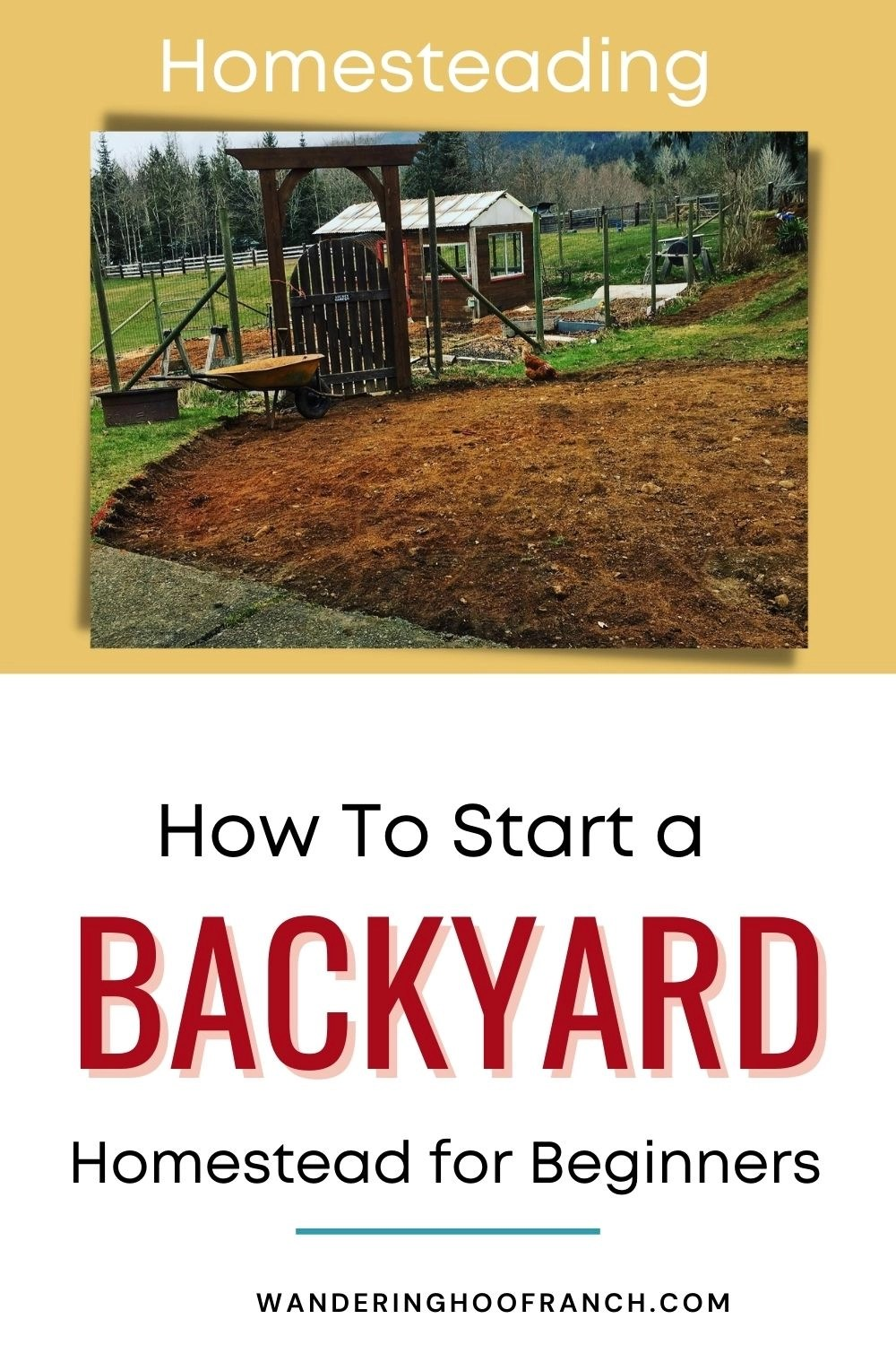 how to start a backyard homestead pin image