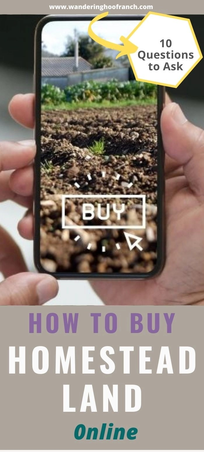 10 questions to ask when buying homestead property online