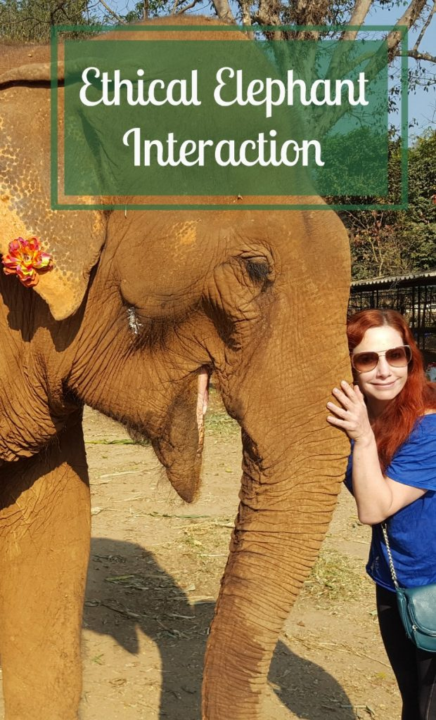 Ethical Elephant Interaction