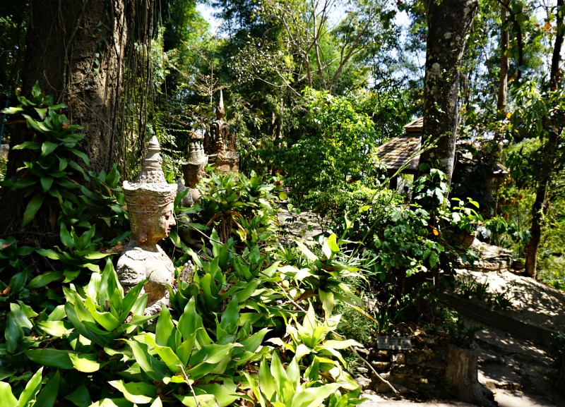 The Monk's Trail Chiang Mai