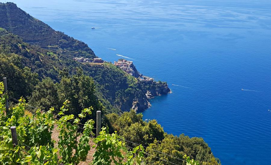Hiking Cinque Terre