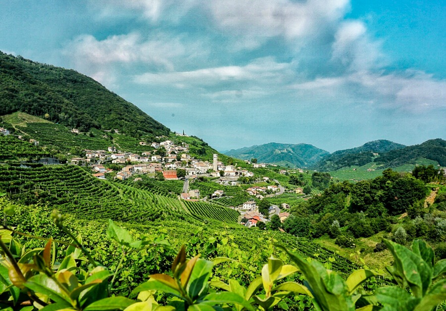 Bubbly Time! Guide to the Prosecco Road in Italy