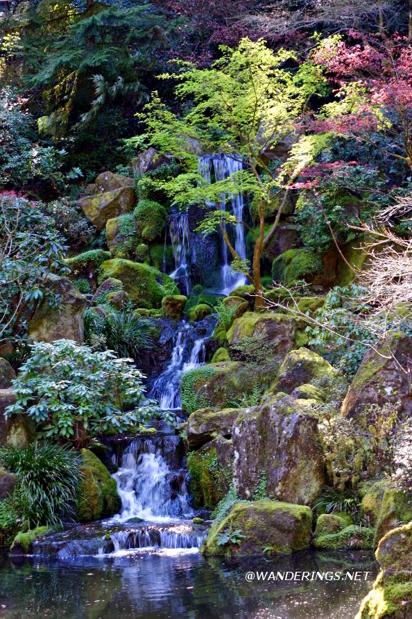Portland Japanese Gardens, Falls ~ by Brent Zupp
