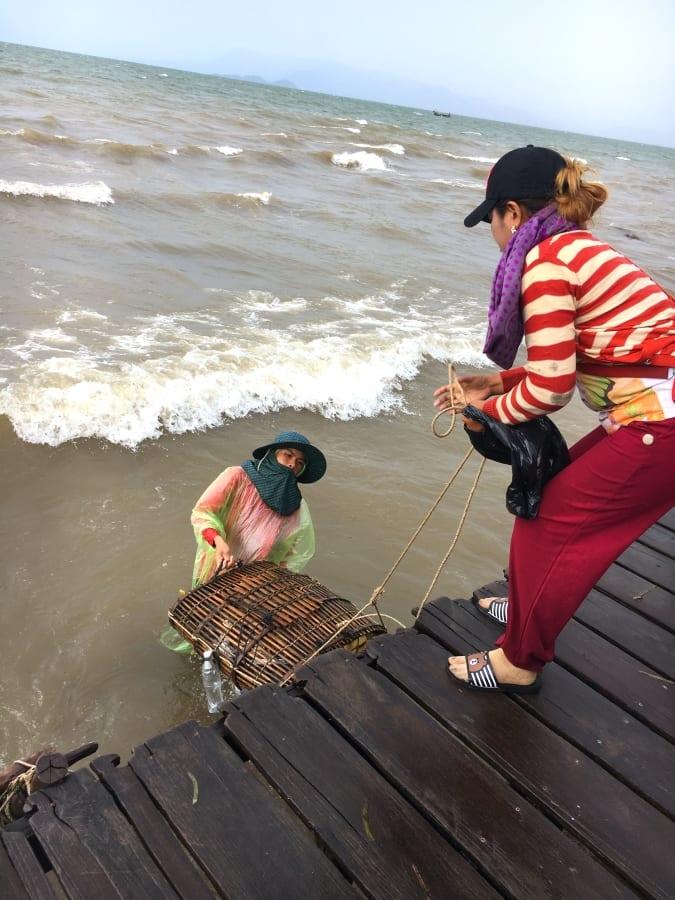 Fishing for fresh Crab