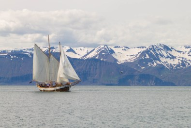 A schooner sails through a channel in Iceland