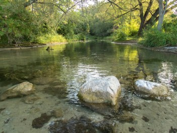 A peaceful river surrounded by trees near sites for camping in Mara Provincial Park